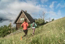 Alpe Adria Ultra Trail 25-60-137 K