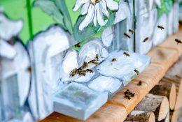 Svetovni dan čebel in piknik prostor za čebele